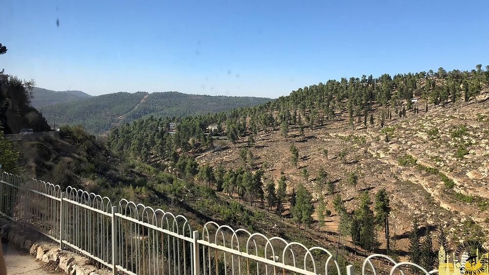 Ein Karem (Israel)