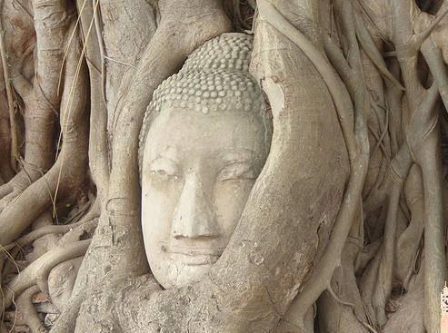 Los Templos de Ayutthaya (UNESCO), excursión desde Bangkok . Tailandia