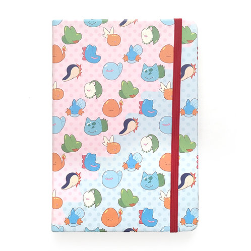 ditto starter notebook