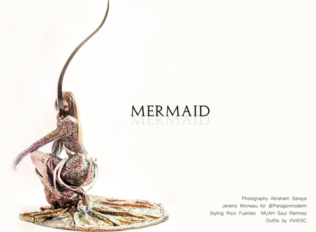 """ MERMAID """