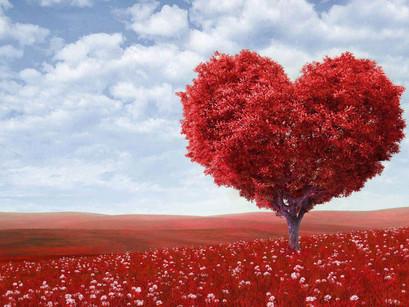 Σκέψεις για την αγάπη