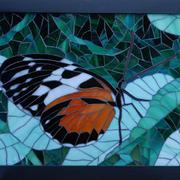 Tiger Longwing-Patti Cannon-Levesque