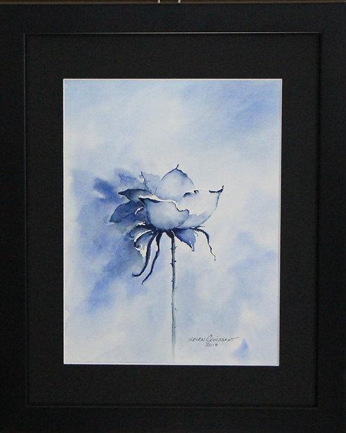 Blue Rose   -Helen Croissant