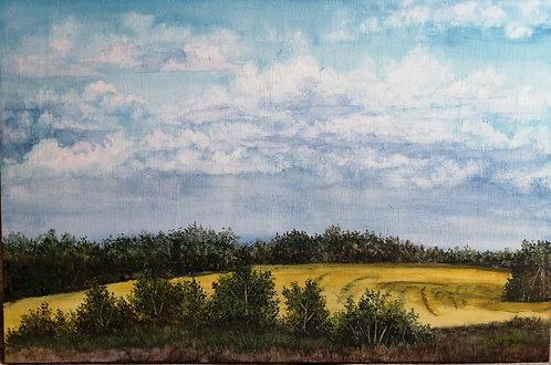 Saskatchewan in July 2020-Linda Jensen