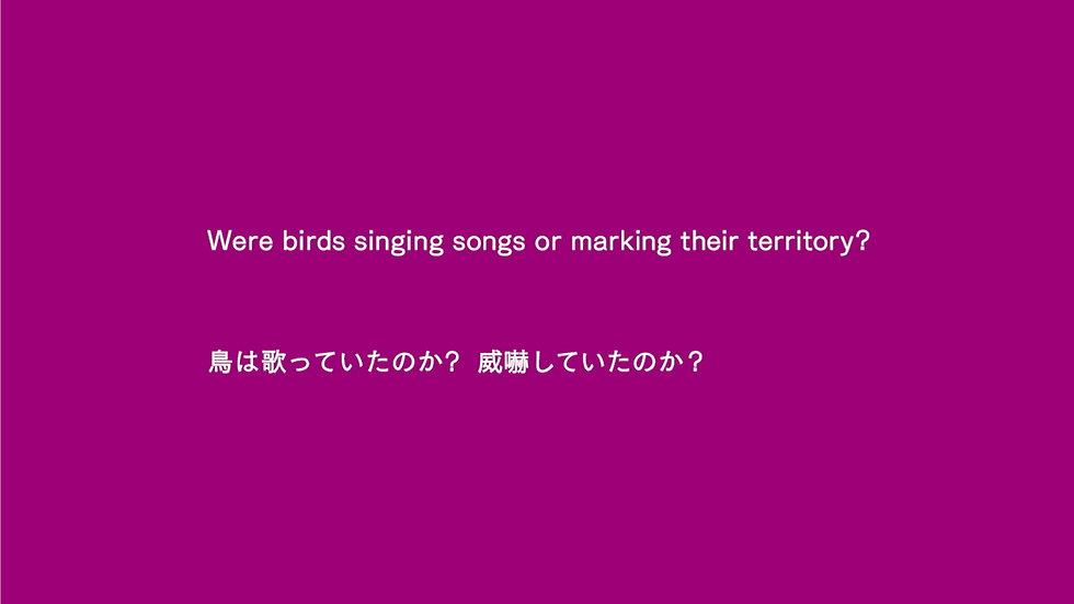 2_Bamboo_Tori_Image.jpg