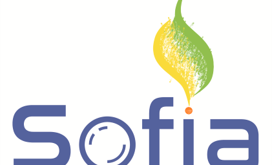 Join us on SoFiA Project online Workshop