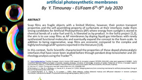 Let's talk about Interfacial characterization of soap films!