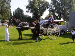 2012 07 Boerenbruiloft 16.JPG