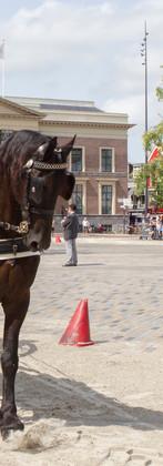 180804 NK ringrijden Leeuwarden (3).jpg