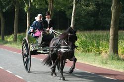 2012 09 Authentiek gerij Hardenberg 08.JPG