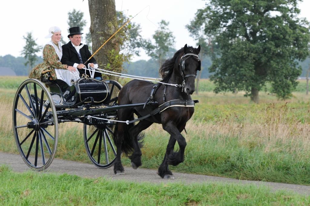 2012 09 Authentiek gerij Hardenberg 35 (1024x680).jpg