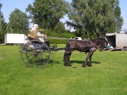 2012 07 Boerenbruiloft 32.JPG