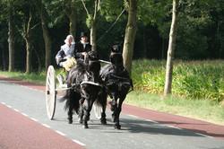 2012 09 Authentiek gerij Hardenberg 10.JPG
