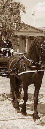 180804 NK ringrijden Leeuwarden (9) bewe