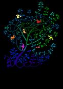 Birds on the plant