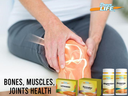 Natural anti-inflammatory aid for bones, muscles and joints