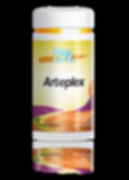 arteplex.png