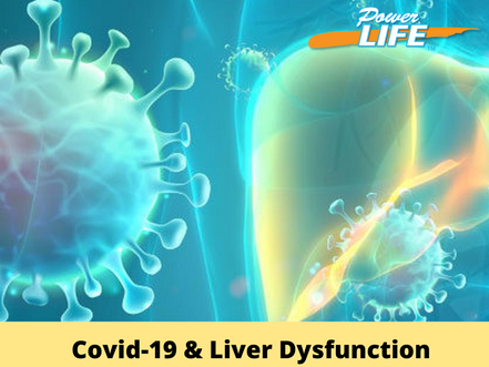 Implications Of COVID-19 On The Liver In Healthy And Diseased States