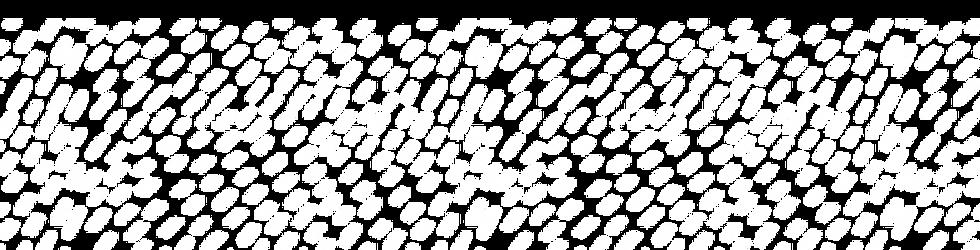 stroke-pattern.png