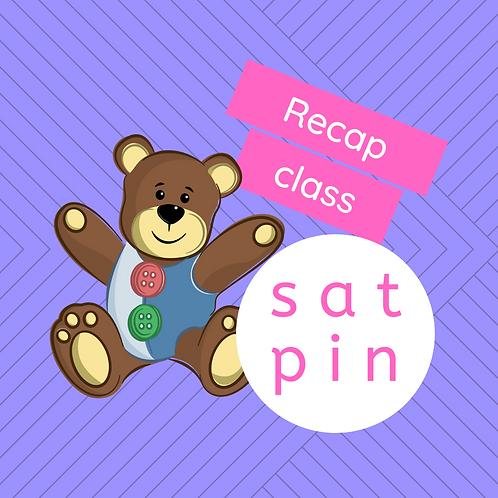Recap class - s, a, t, p, i & n