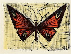 Papillon Rouge Et Jaune 1964