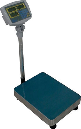 Micro KC Counting Platform Scale