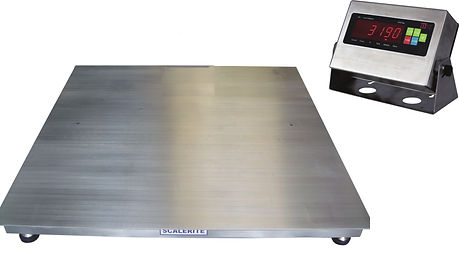 Micro Stainless Steel Industrial Platform Scale