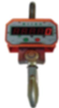 Micro crane scale