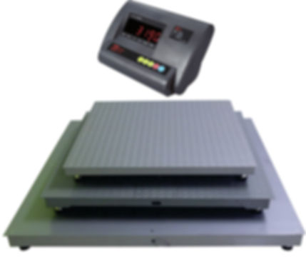 Micro A12E Indusrial Platform Scale