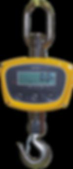 Micro 2Ton Crane Scale