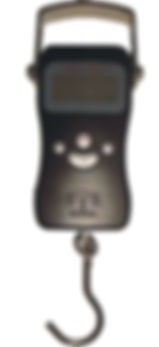 Micro Digital Fishing Scale
