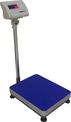 Micro A12 Platform Scale