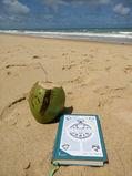 Knietzsche und das Hosentaschenorakel am Strand mit einer Kokusnuss
