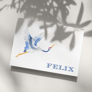 Geboortekaart Felix.jpg