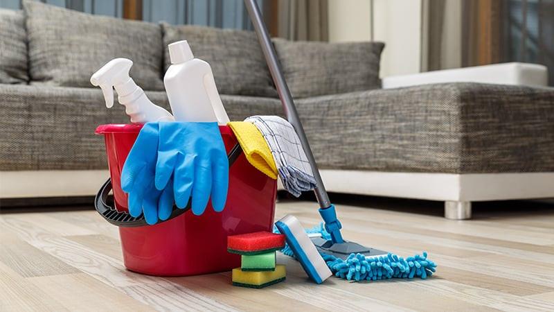 Manter a Limpeza da Casa