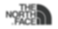 The-North-Face-Logo-Vector-Design-226x22