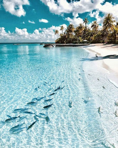 20 Most Beautiful Islands in the World -