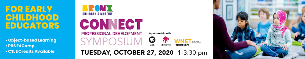 banner - Connect Professional development - october 27, 2020 - cleck for more information