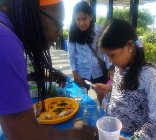 Bronx Children's Museum finds a natural spot for art-making and education in Mill Pond Park