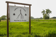 Liberty Tree Farm