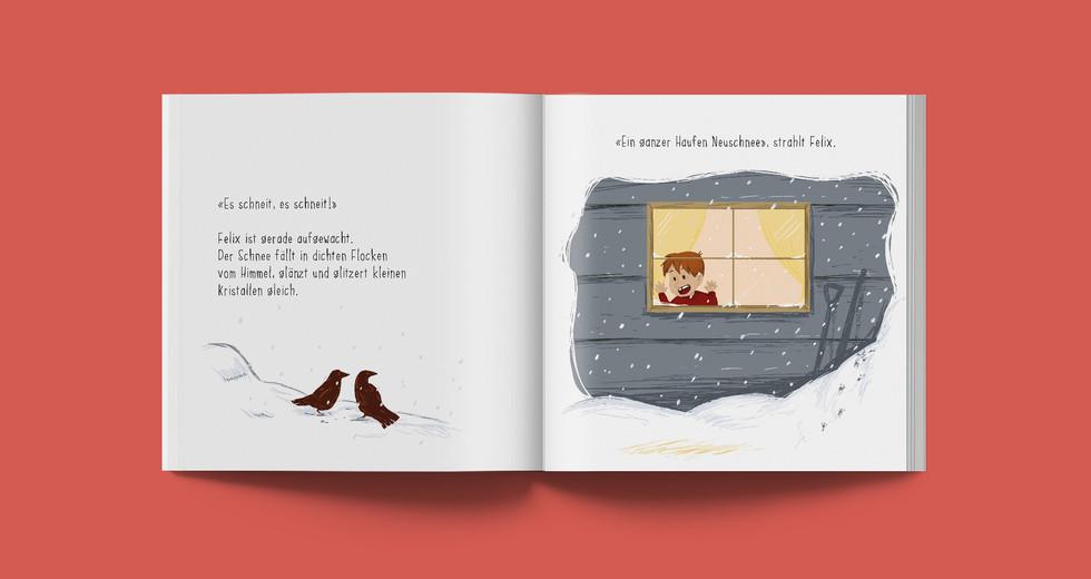 02_Bilderbuch_Felix.jpg
