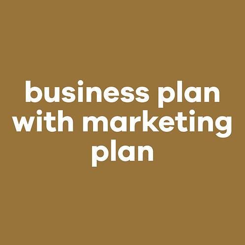 Business Plan w/marketing plan