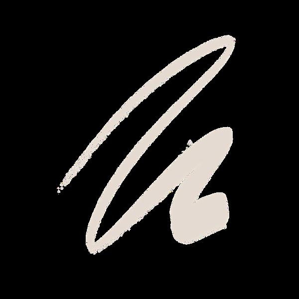brush2_edited.png