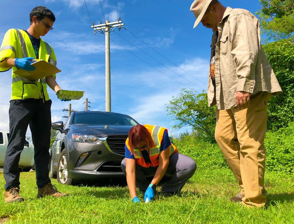 Brian Moyer, right, assists the US EPA and Guam EPA Superfund team in identifying areas where Guam veterans said they sprayed with Agent Orange. Photo courtery of Offce od Senl Therese Terlaje