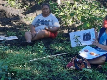Samoa uses community strength, local knowledge and collective memory to prepare for Covid-19