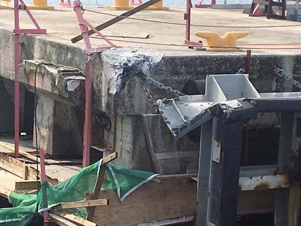 Nippon Maru accident