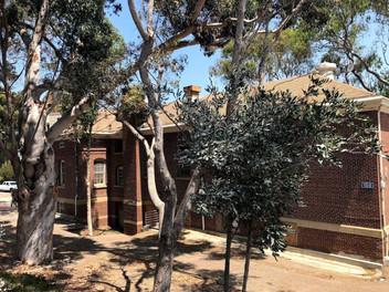 Report: DOD lacks diligence in managing historic properties