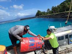Interim bottomfish measure addresses overfishing