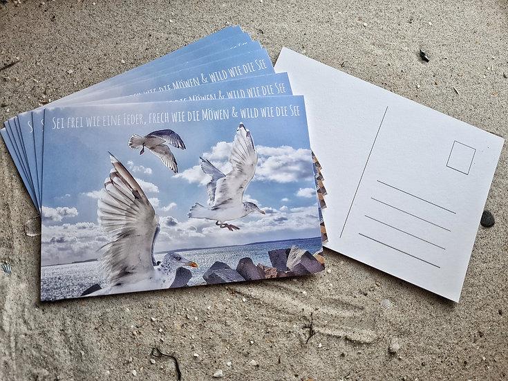 Postkarte Möwen