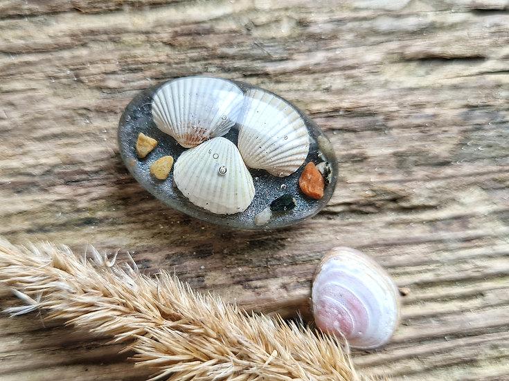 Strandgut Magnet Muscheltrio grau